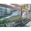 5mmF绿+0.76pvb+5mm白玻佛山建筑夹胶玻璃